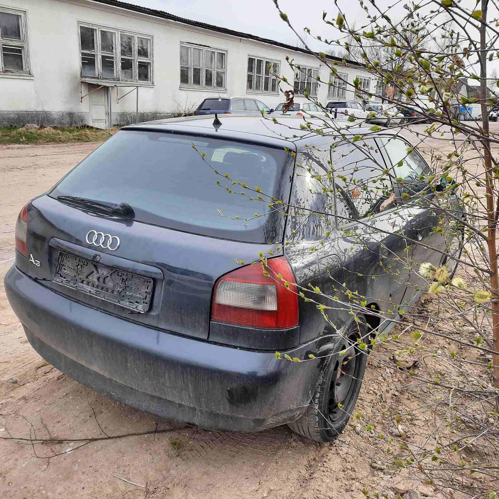 Naudotos automobiliu dallys Foto 8 Audi A3 1997 1.9 Mechaninė Hečbekas 2/3 d. Juoda 2021-4-29 A6183